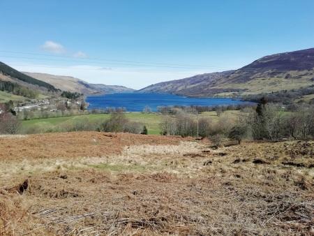 Loch Earn Sunny.jpg